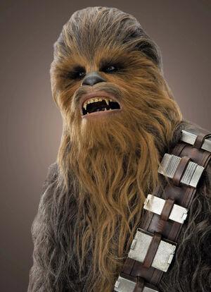 Chewbacca Based On.jpg
