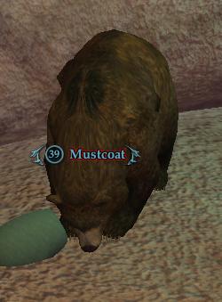 Mustcoat