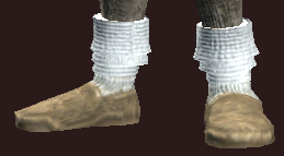 Adept's Shoes of Knowledge (Equipped).png
