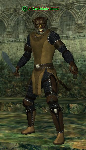A Darkblade scout