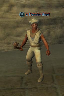 A Dervin thief