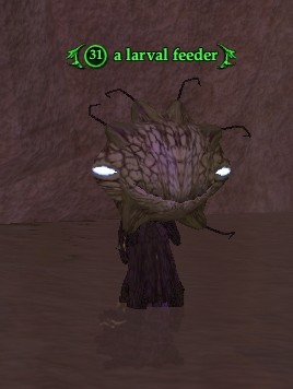 A larval feeder (The Tombs of Night: A Search For Answers)