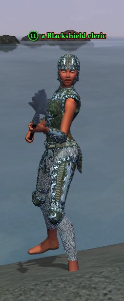 A Blackshield cleric (Timorous Deep) (half elf).png