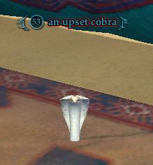 An upset cobra