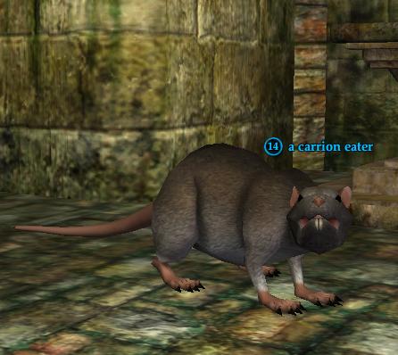 A carrion eater