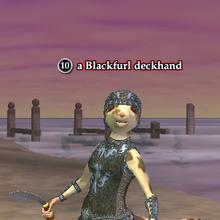 A Blackfurl deckhand (ratonga).png