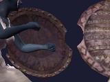 Coal Encrusted Shield