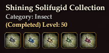Shining Solifugid Collection