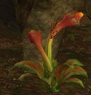 Pollen flowers.png