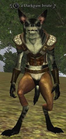 A Darkpaw brute