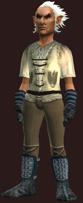 Male tradesman (Armor Set) (Visible, Male).png
