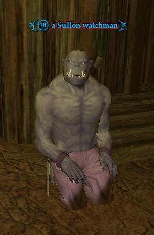 A Sullon watchman