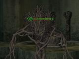 A caveroot horror