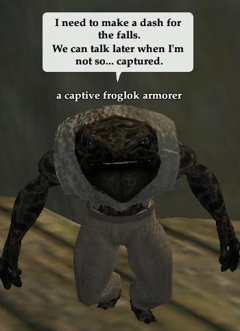 Captive froglok armorer