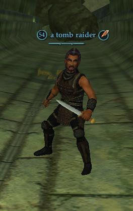 A tomb raider
