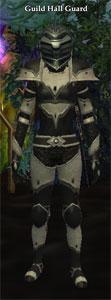 Guild Guard