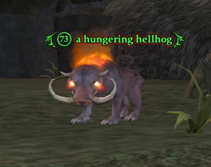 A hungering hellhog