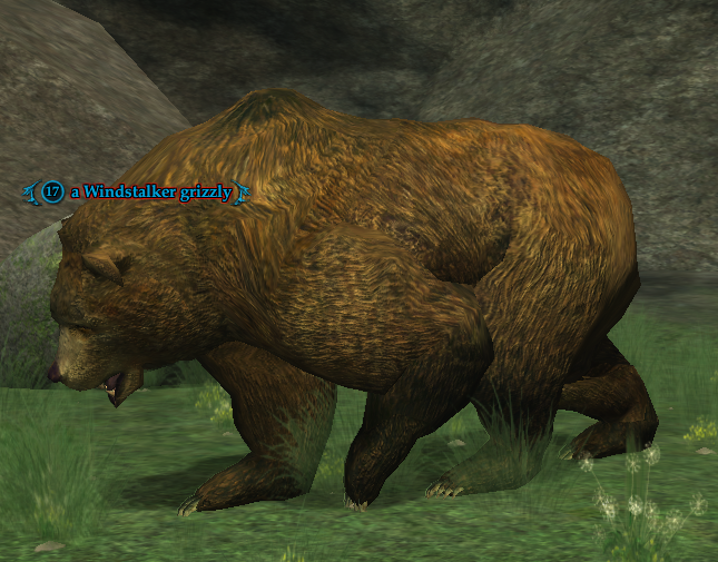 A Windstalker grizzly