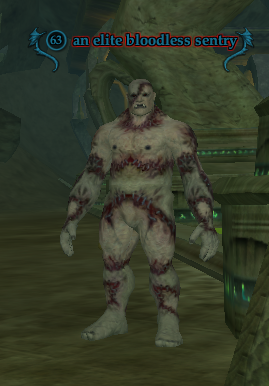 An elite bloodless sentry