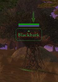 Blackbark