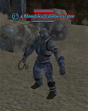 A Bloodskull domesticator