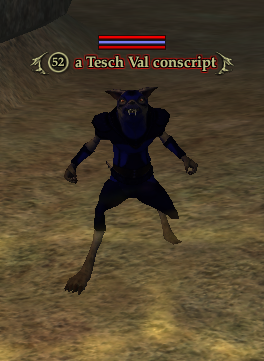 A Lteth Val conscript