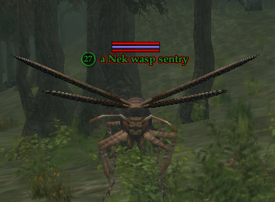 A Nek wasp sentry