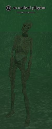 An undead pilgrim