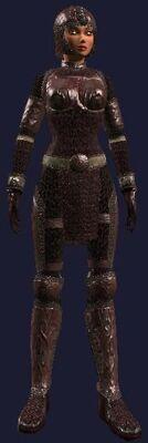 Harmonious Blood Mail (Armor Set) (Visible, Female).jpg