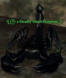 A Deadly Small Scorpion