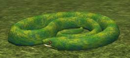 Race snake.jpg