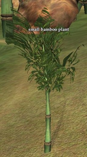 Bamboo Bending