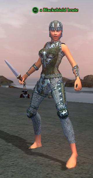 A Blackshield brute (Timorous Deep) (half elf).png
