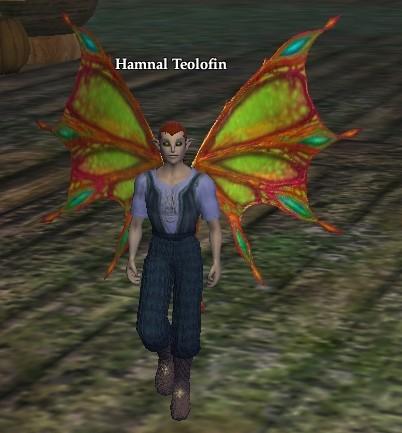 Hamnal Teolofin