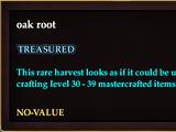 Oak root