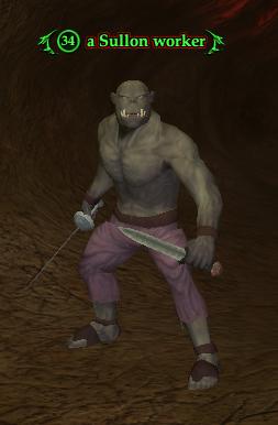 A Sullon worker (The Sullon Mines)