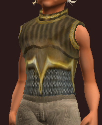 Archon's Breastplate (Equipped).png