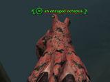 An enraged octopus