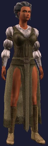 Academy negotiator (Armor Set) (Visible, Female).jpg