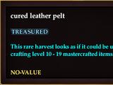Cured leather pelt (Version 2)