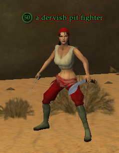 A dervish pit fighter
