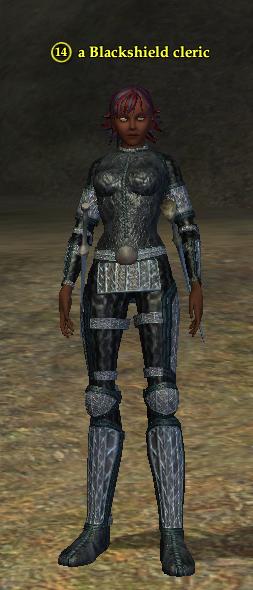 A Blackshield cleric (Commonlands) (half elf).png