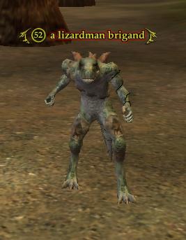 A lizardman brigand