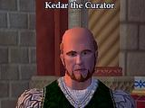 Kedar the Curator