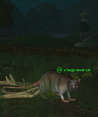 A large moat rat