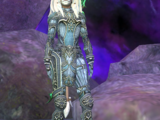Mercenary: Chumba Spiritcaller