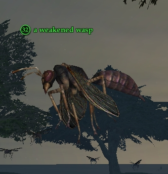 A weakened wasp