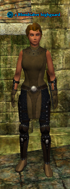 A Bloodsaber highguard