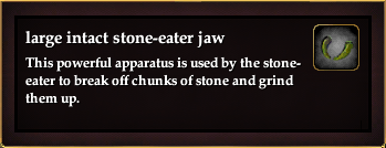 Large intact stone-eater jaw