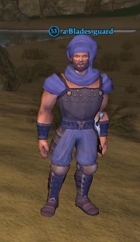 A Blades guard (Maj'Dul)